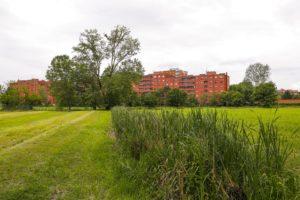 Visita guidata alla cascina Campazzo e al Parco Agricolo del Ticinello